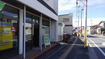 仙台の畳襖リフォーム店・畳のナカジマ(お店の前の可愛い訪問者)